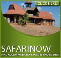 SafariNow